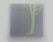 foggy day II 74,5x74,5cm